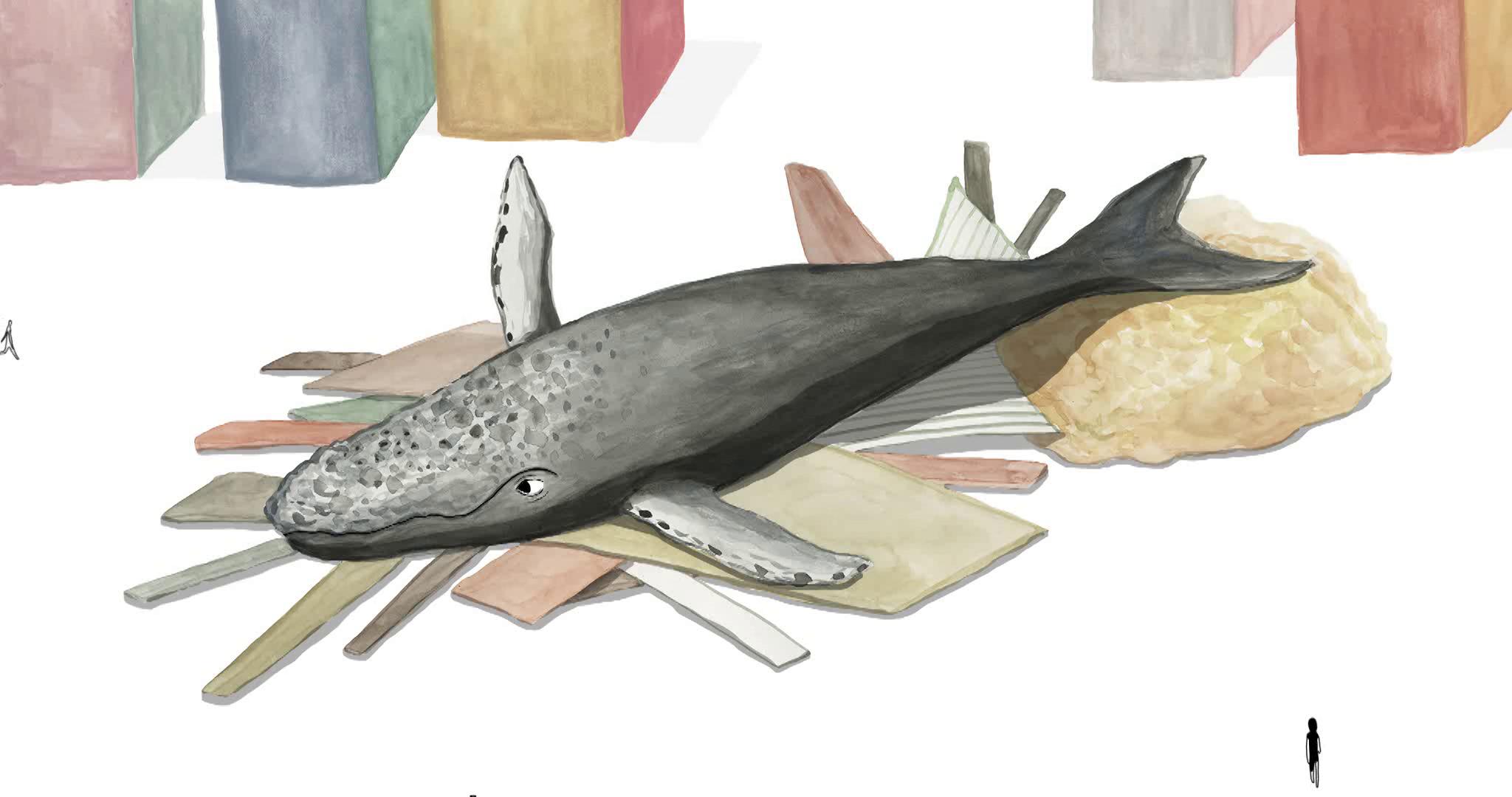 KONKURS_KROTKIMETRAZ_The Whale in the Room 1